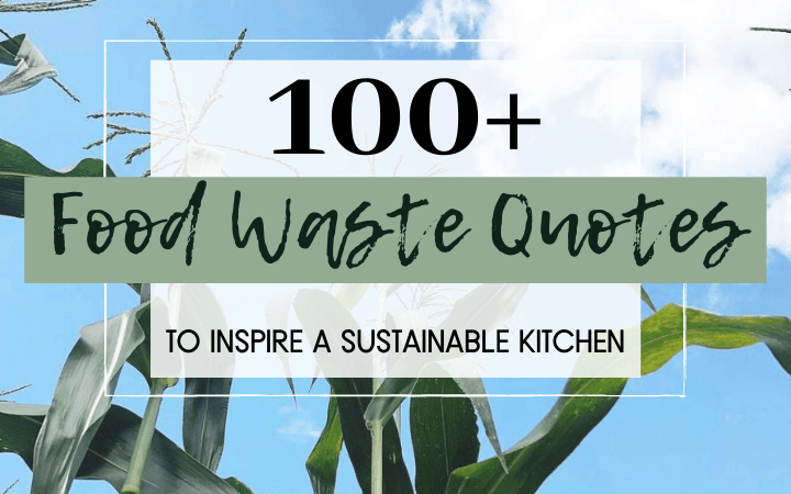food waste quotes