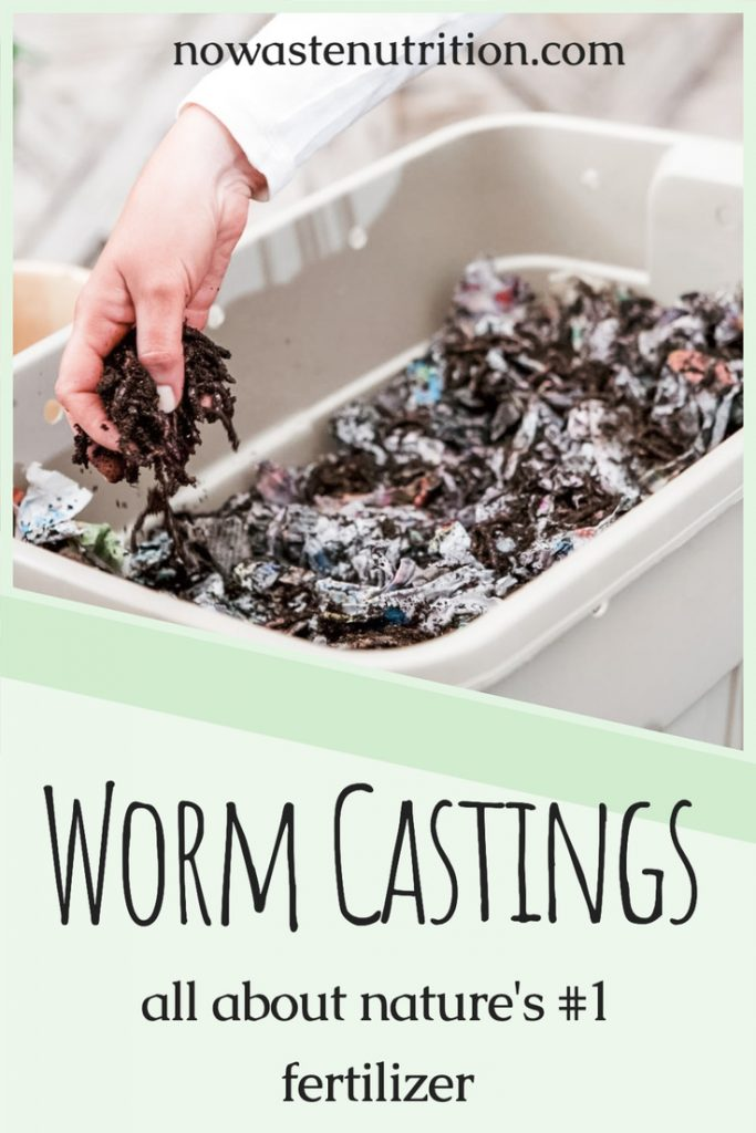 what are worm castings